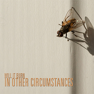 Will It Burn - In Other Circumstances