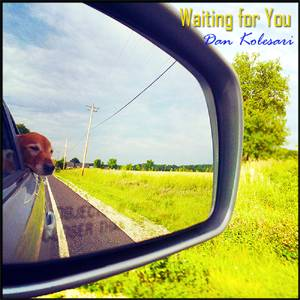 Dan Kolesari - Waiting For You