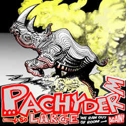 Pachyderm Recording Artists - So Large We Ran Out Of Room… Again