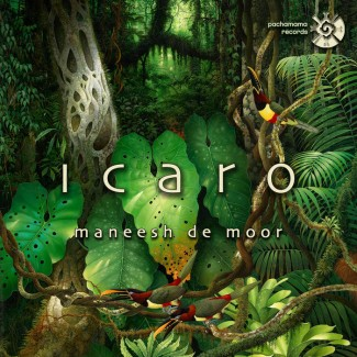 Maneesh de Moor - Icaro