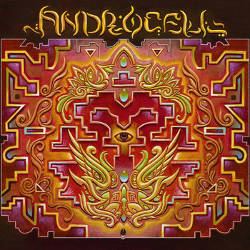 Androcell - Imbue