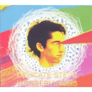 Delicate Steve - Wondervisions