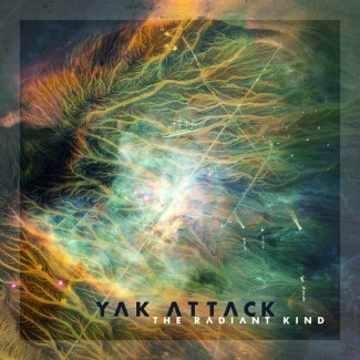 Yak Attack - The Radiant Kind
