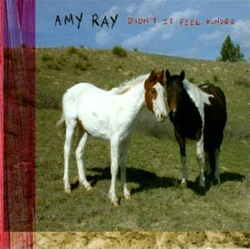 Amy Ray - Didn't It Feel Kinder